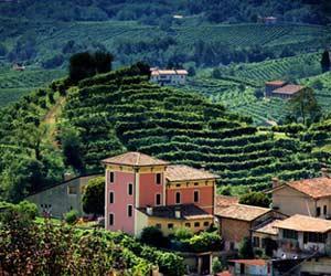 Colline del Prosecco i Treviso